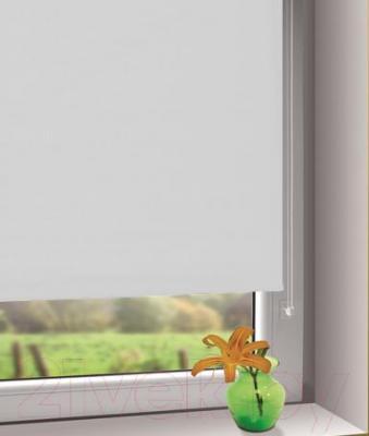 Рулонная штора Gardinia Мини 510 (80x150) - в интерьере