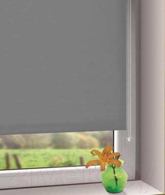 Рулонная штора Gardinia Мини 519 (57x150) - в интерьере