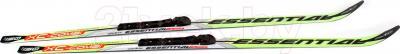 Лыжи универсальные беговые Arctix Essential 195 / 349-10195 (салатовый) - общий вид