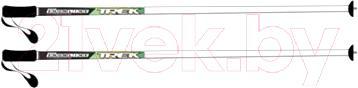 Палки для беговых лыж TREK 155 - общий вид
